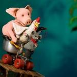 Zur Bildergalerei: Mauser, Hahn und Ferkelschwein